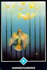 Princess of Cups Tarot Court Cards