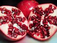 Pomegranate Flora